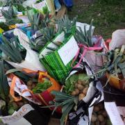 Des sacs bien remplis de bons légumes